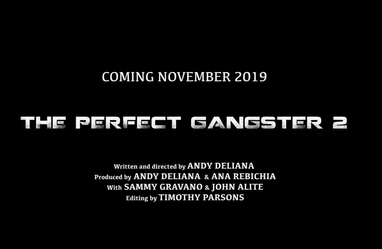the perfect gangster 6